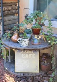お庭カフェごっこ♪今年も営業中 - ペコリの庭 *