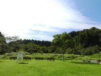 過ごしやすくなりました。 - 千葉県いすみ環境と文化のさとセンター