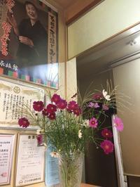 宮ノ下のコスモス畑http://fukui2018.pref.fukui.lg.jp/both/bunka_program/bunkaprogram188 - ふくい女将日記~宝永(ほうえい)旅館、おかみでございます。