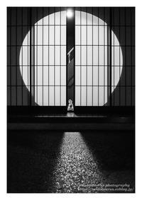 お出迎え - ♉ mototaurus photography