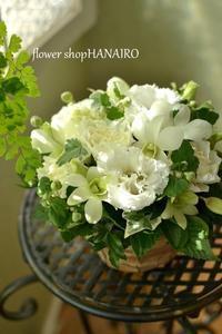 亡くなったわんちゃんへ贈るフラワーアレンジメント。 - 花色~あなたの好きなお花屋さんになりたい~