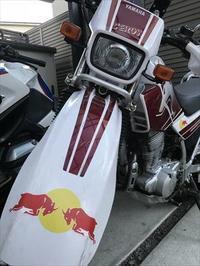 レッドブル ならぬ レッドセロー - SAMとバイクとpastime