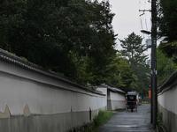 雨の奈良 - kyoko(*^_^*)で~す