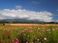田舎の秋景色 - 八ヶ岳 革 ときどき くるみ