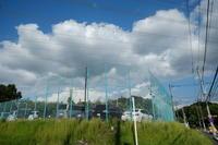 雲 空 - エンジェルの画日記・音楽の散歩道