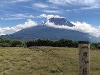 竜ヶ岳(1485m)道を塞ぐスズタケとの格闘 - ヤッホー!今日はどちらへ?