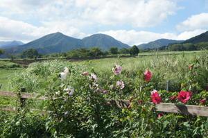 【鳥取島根山口の旅⑤大山・蒜山高原でワインとソフトクリーム】 -