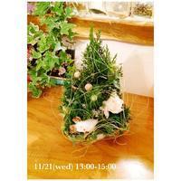 11~12月開催(^^)imsgardenさんのお花のWSのご案内* - Ange(アンジュ) - 小林市の雑貨屋 -