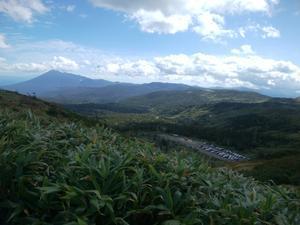 八幡平山頂へ行きました - 野生の花を探すハイキング