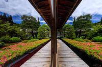 雲龍院・サツキの季節(泉涌寺塔頭) - 花景色-K.W.C. PhotoBlog