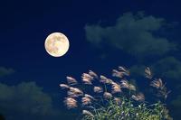 24日は中秋の名月。25日は牡羊座の満月。 - プランテプラネットのブログ。ここからもうちょっと