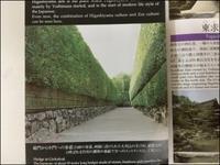 素晴らしきかな京都 - あずきのばあばの、のんびり日記