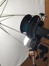 2018/09/21本郷式フラッグフレーム+AF MICRO NIKKOR 70-180+α9で料理を撮影する - shindoのブログ
