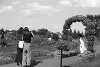観光損害290億円と観光記念写真 - 照片画廊