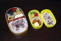 焼き鯖 - 庶民のショボい弁当