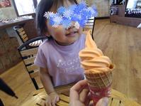 愛果堂の伊予柑ソフト&石鎚山SAのソフトクリーム - Meenaの日記
