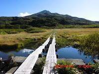 紅葉前の鳥海山 - 花立の花情報