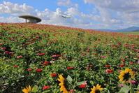 飛んでいく・・・ ~旭川空港~ - 自由な空と雲と気まぐれと ~from 旭川空港~