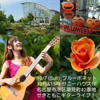 ブルーボネットで演奏します! - 愛知・名古屋を中心に活動する女性ギタリストせきともこのブログ