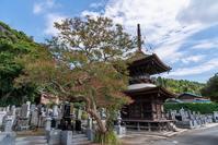 東日本ではとても珍しい形の塔【重要文化財】来迎院 多宝塔(茨城県 龍ケ崎市) - 近代文化遺産見学案内所