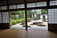 妙蓮寺:十六羅漢石庭@京都・西陣 - たんぶーらんの戯言
