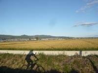金色ロード - 函館の建築家 『北崎 賢』日々の遊びと仕事