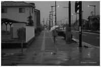 秋雨 - BobのCamera