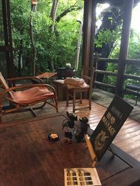 森のテラス  in  Makiko  Joy  9月。 - MakikoJoy 上北沢のアロマセラピールームあつあつ便り