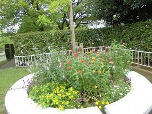 団地の中の花壇は美しかった(^_-)-☆ -