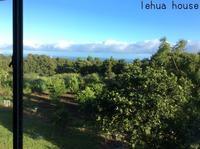 Hawi のゲストハウス  ハワイ島コハラ滞在記 2018.9 - Hawaiian LomiLomi サロン  華(レフア)邸