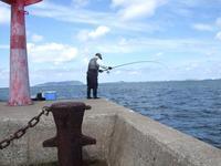 こっぱグロが釣れてました - 73歳 車いす釣師 博多湾ピンポイント奮闘釣り日誌