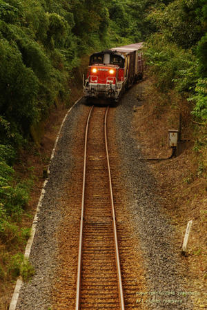 ローカル鉄道散歩