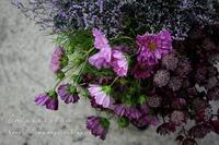 花を摘みに - Impression Days