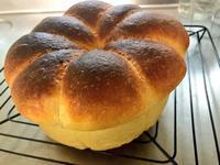 9月 10月のパンの会は。 - le petit bonheur パンのあるちょっと幸せな生活