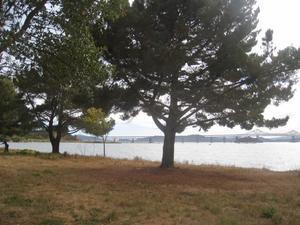 ちょっと不気味な雰囲気が漂う公園 - 海辺の小さな家でシンプルなシニアライフを楽しむ