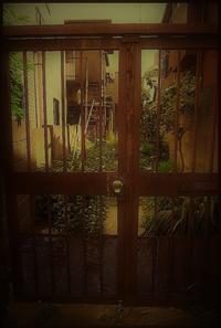 駒込界隈 -39 - Camellia-shige Gallery 2