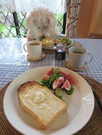 朝ごはん♪ - おぽログ♪
