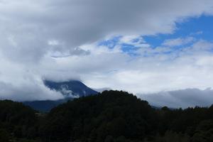 9月22日「夕刊」ワンちゃんとお孫ちゃんDay! - 開田のポッポ屋