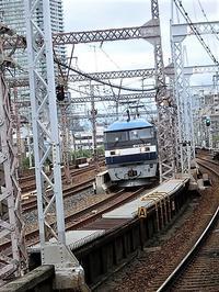 藤田八束の鉄道写真@鉄道写真はとにかく楽しい、元気を貨物列車からもらう・・・桃太郎、金太郎、レッドベア - 藤田八束の日記