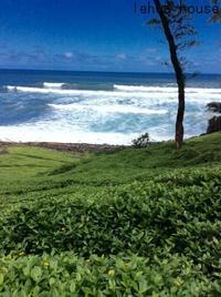 生理と浄化の話   ハワイ島コハラ滞在記  2018.9 - Hawaiian LomiLomi ハワイのおうち 華(レフア)邸