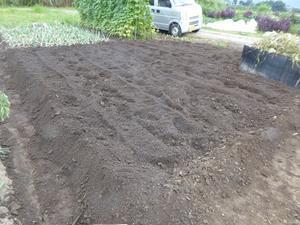 午後の畑 -