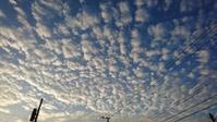 いわし雲。 - 青い海と空を追いかけて。