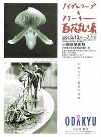 メイプルソープ&アラーキー百花乱々展 - Art Museum Flyer Collection