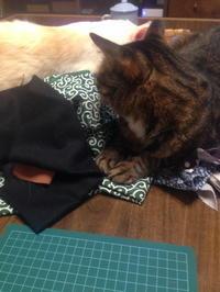 楽しく作業中。 - 世帯主は猫なんです。