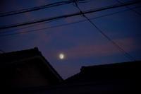 9月22日の月 - 蓮華寺池の隣5