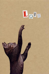 COLLAGE CARD #100 : LOVE「ラヴ」 - maki+saegusa