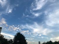 秋の空 / テーブルセンターの刺しゅう - y-hygge