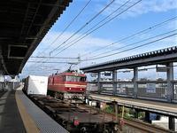藤田八束の鉄道写真@今鉄道が熱い・・・貨物列車を激写、青い森鉄道も激写 - 藤田八束の日記