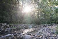 下越の渓 - 野に棲む日日