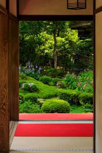 初秋の花咲く三千院 - 花景色-K.W.C. PhotoBlog